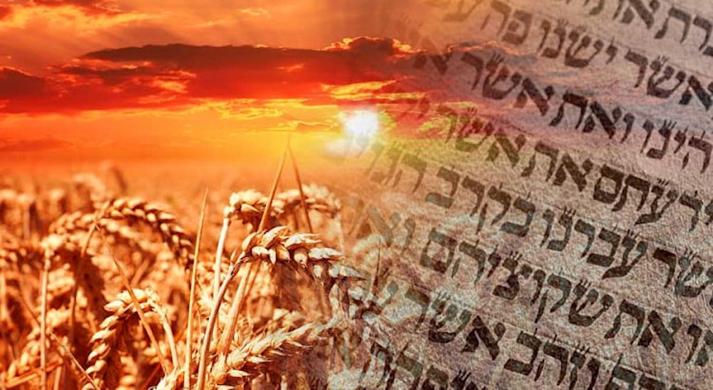 De vierde dag Wekenfeest